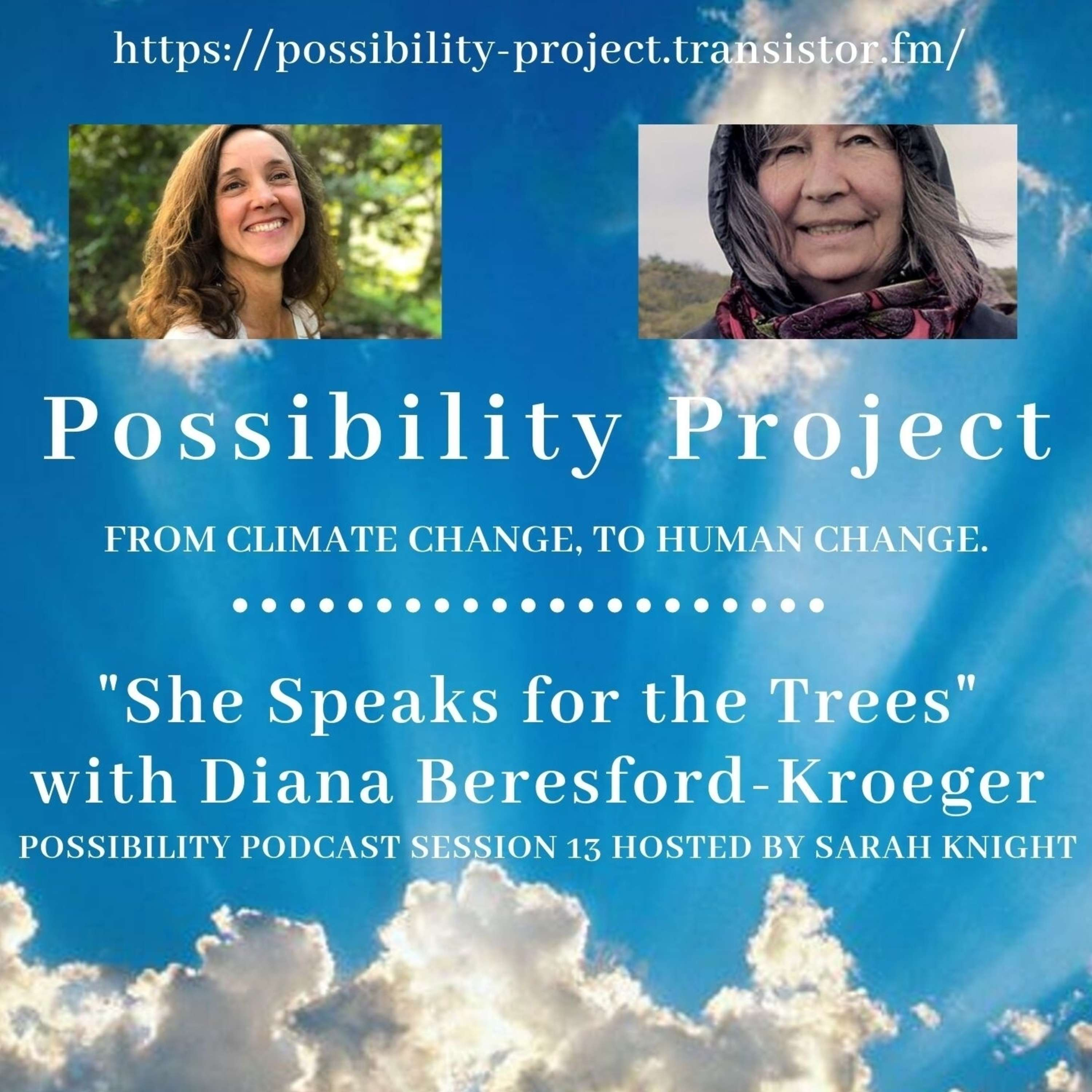 She Speaks for the Trees, with Diana Beresford-Kroeger. Possibility Podcast Session 13
