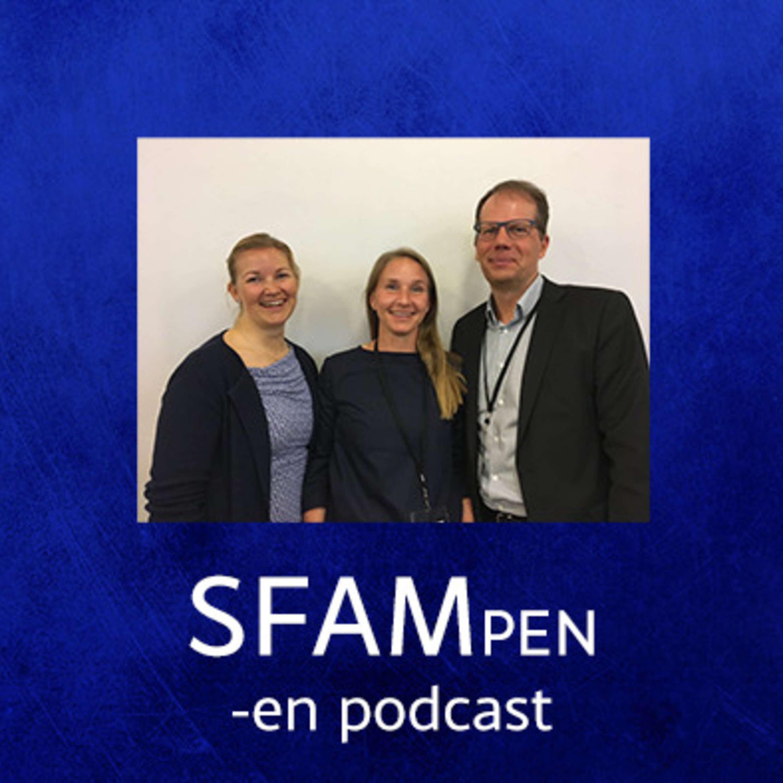 Anna Häger Glenngård och Anders Anell om ersättningsprinciper i primärvården