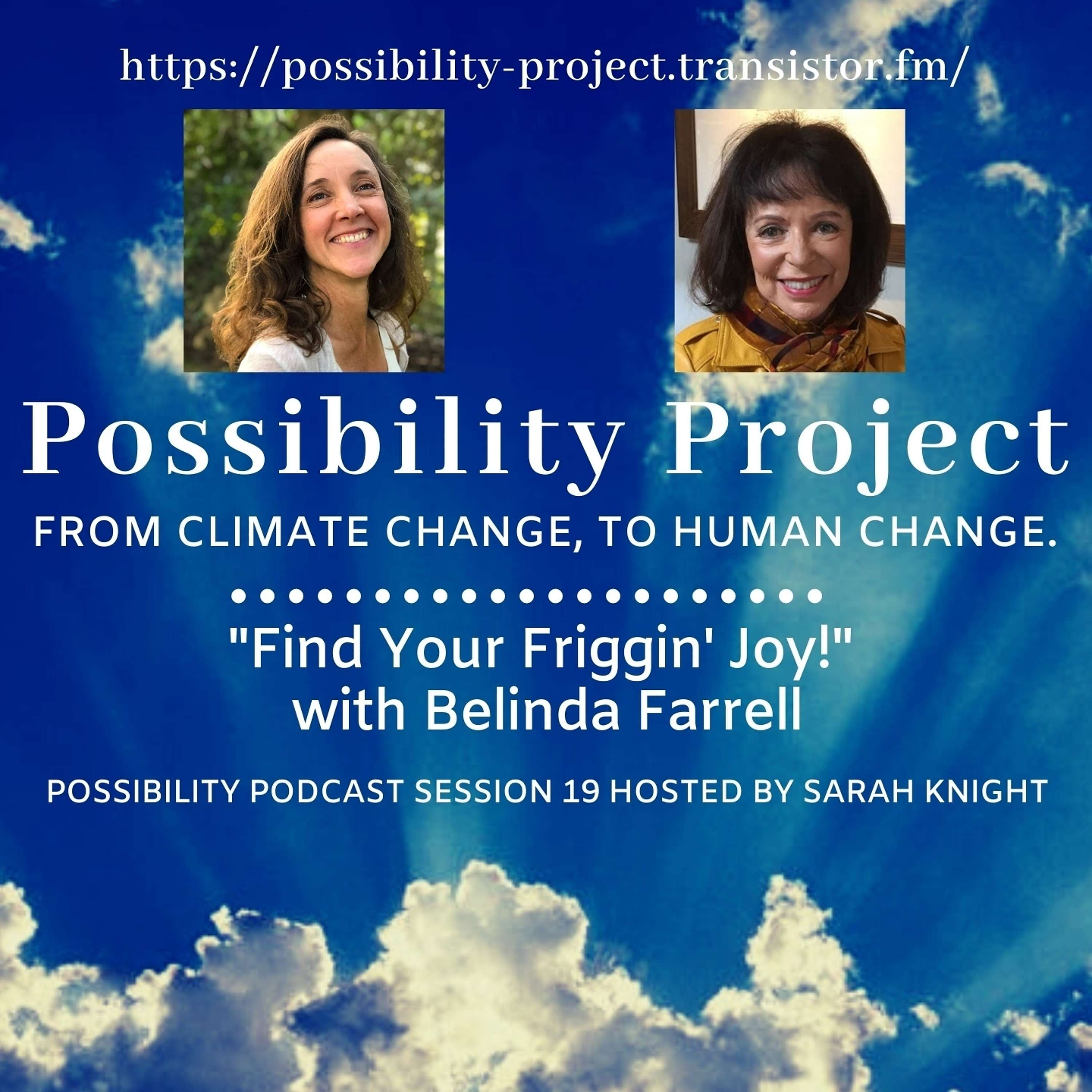 Find Your Friggin' Joy! Possibility Podcast Session 19