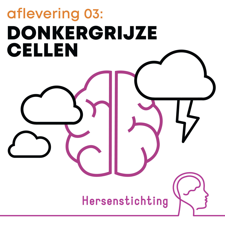 Donkergrijze cellen: aflevering 3 – Floortje Scheepers