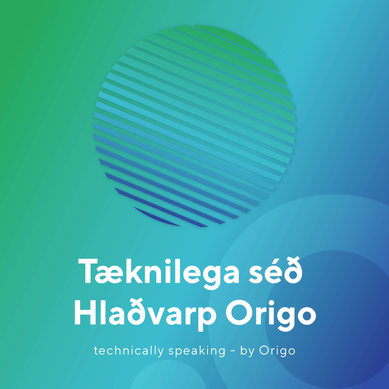 12 Days of a Cyber Secure Christmas by Origo