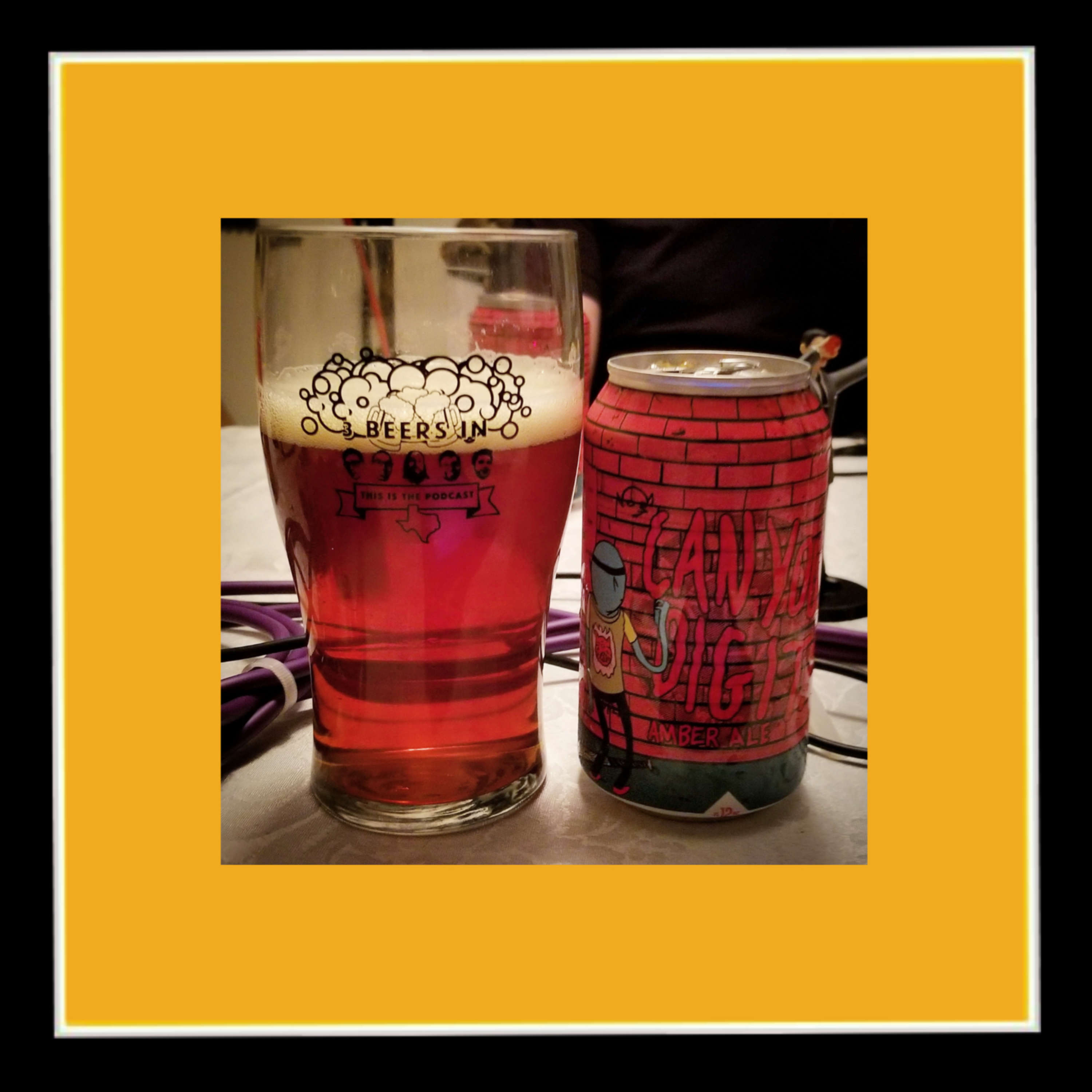 4th Tap Brewing Cooperative - Can You Dig It Amber Ale