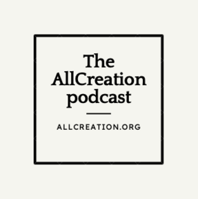 The AllCreation Podcast