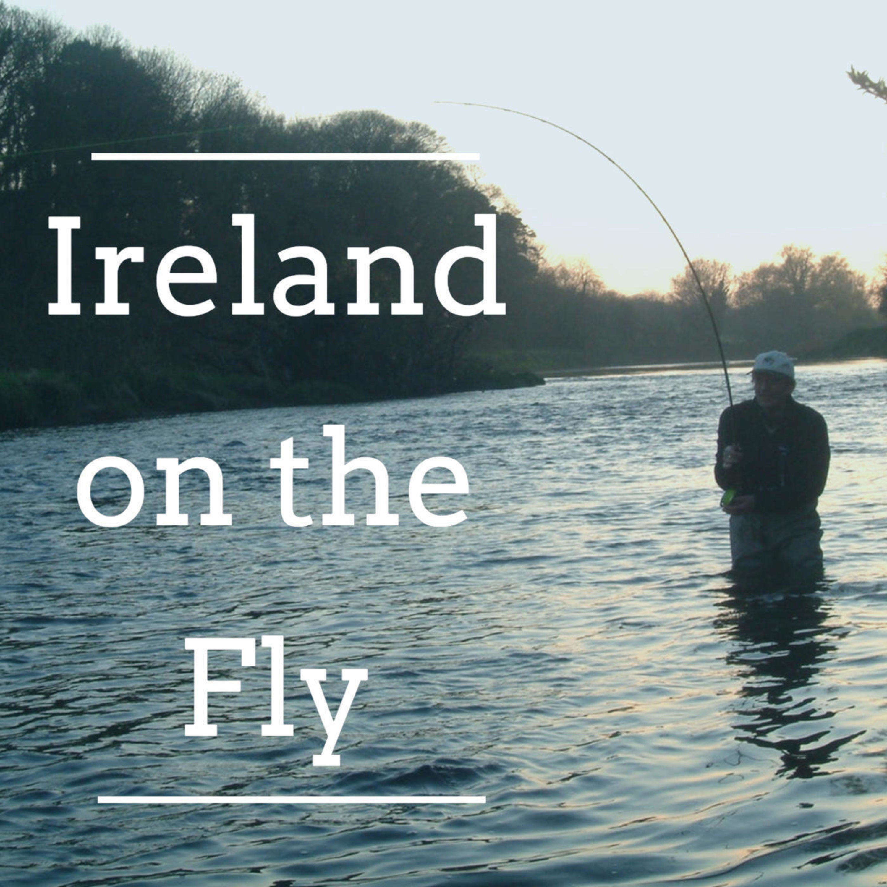 Dry Fly & Night Fishing Tactics for Sea Trout