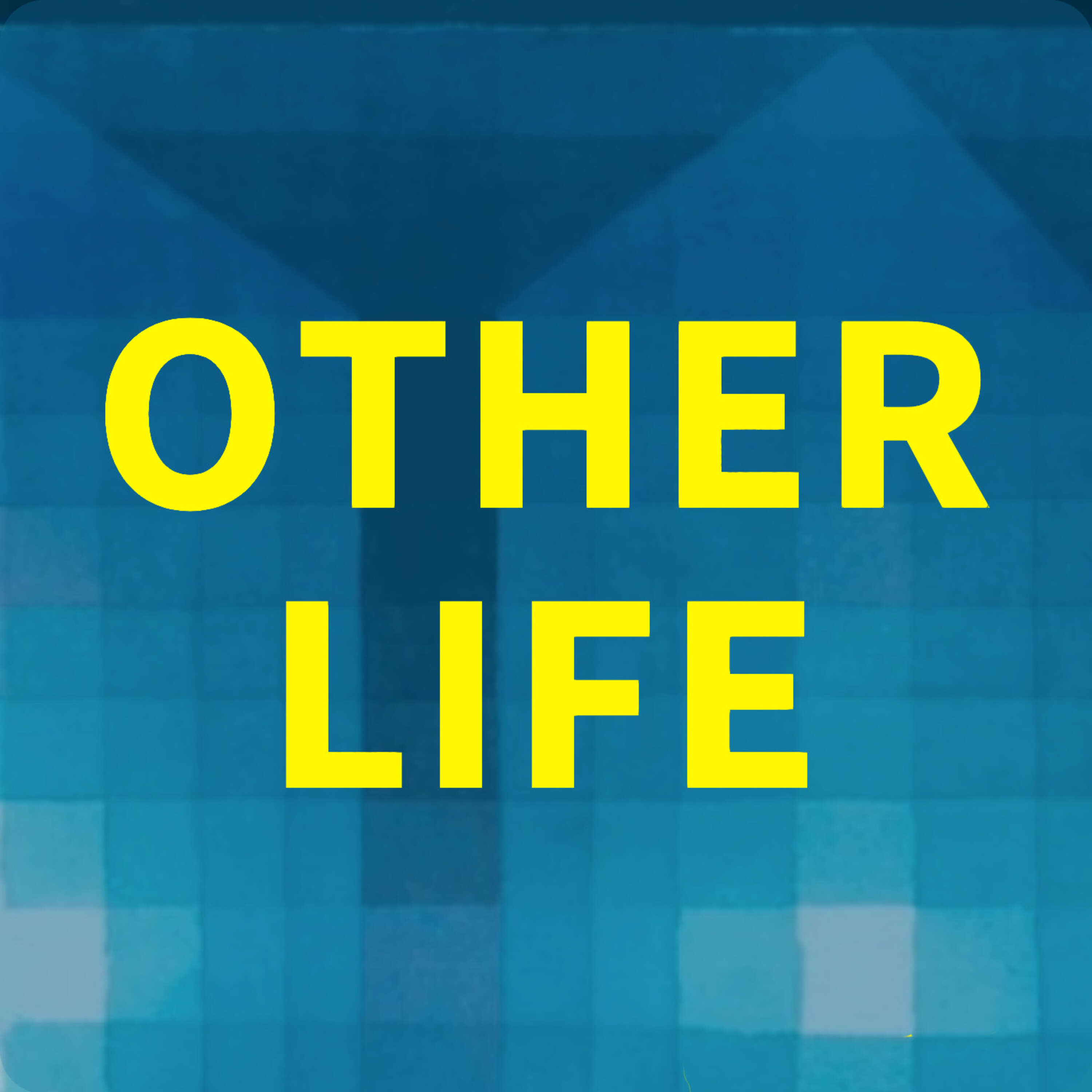Other Life podcast show image