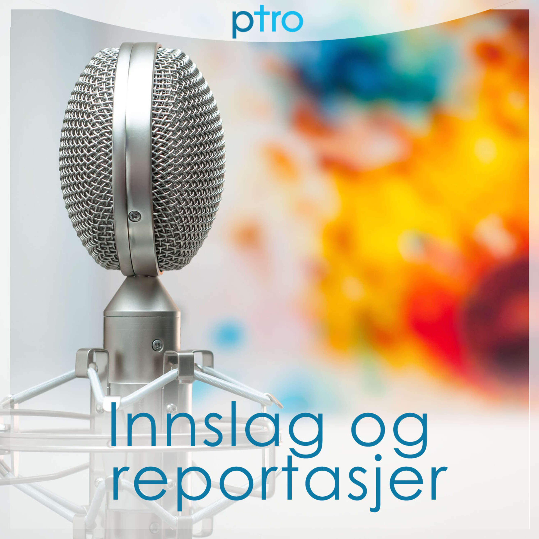 pTro - Innslag og reportasjer